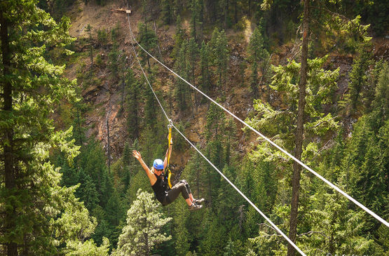 Coming down the line: What's new on the zipline this year